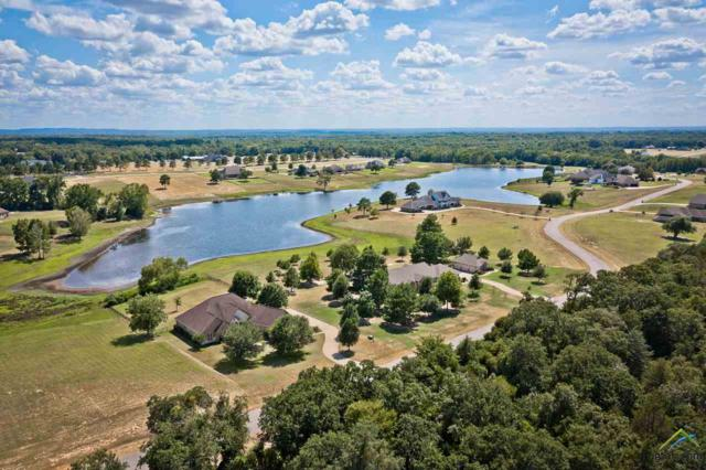 16541 Stallion Shores, Lindale, TX 75771 (MLS #10098463) :: The Wampler Wolf Team