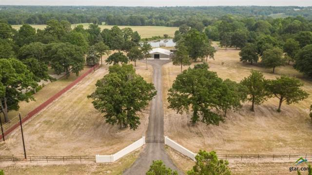 11808 County Road 41, Tyler, TX 75706 (MLS #10098553) :: RE/MAX Impact