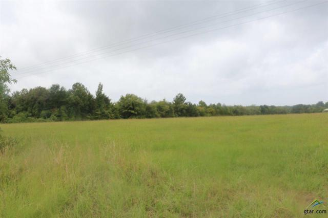 4001 Fm 2225, Quitman, TX 75783 (MLS #10098584) :: The Wampler Wolf Team