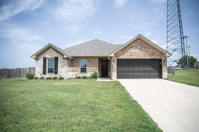 1014 Hilltop Trail, Bullard, TX 75757 (MLS #10098654) :: The Wampler Wolf Team