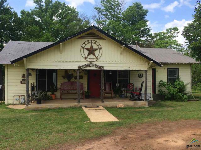10046 Fm 314, Brownsboro, TX 75756 (MLS #10098814) :: The Wampler Wolf Team