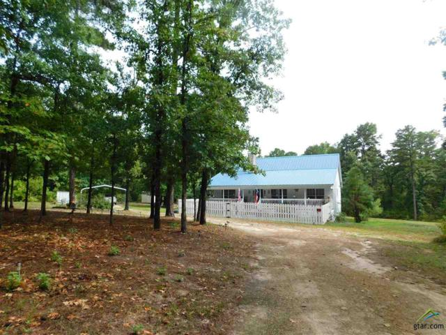 645 Cr 3999, Winnsboro, TX 75494 (MLS #10098815) :: The Wampler Wolf Team