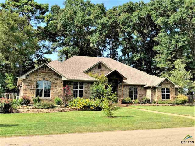 290 Cr 3505, Bullard, TX 75757 (MLS #10098817) :: The Wampler Wolf Team
