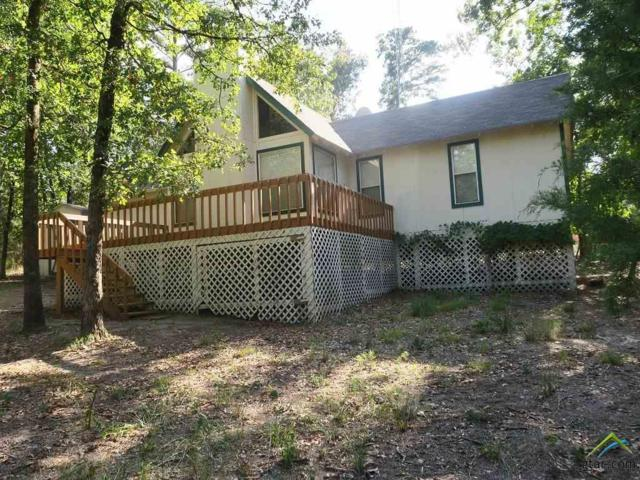 507 Knollwood Lane, Holly Lake Ranch, TX 75765 (MLS #10099301) :: RE/MAX Impact