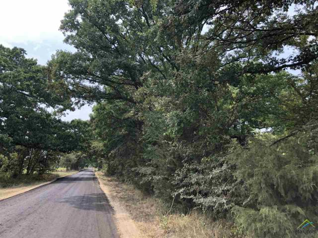 TBD County Road 2426 Rd, Como, TX 75431 (MLS #10099363) :: The Wampler Wolf Team