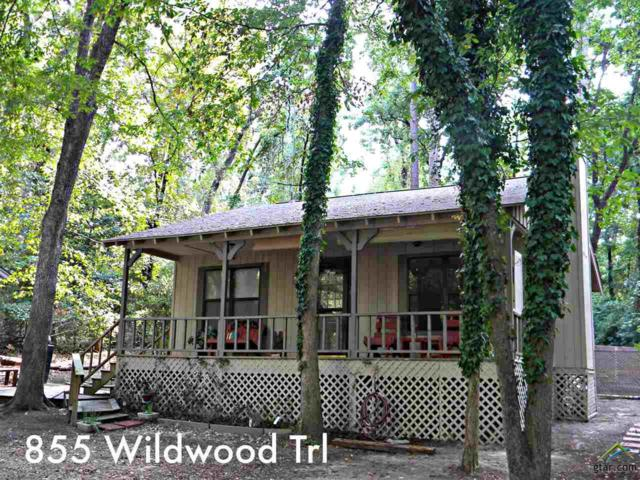 855 Wildwood Trl, Holly Lake Ranch, TX 75765 (MLS #10099449) :: RE/MAX Impact