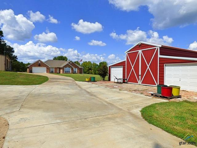1266 County Road 3365, Cookville, TX 75558 (MLS #10099547) :: RE/MAX Impact