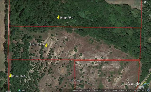 Tract 4 Cr 2382, Mineola, TX 75773 (MLS #10099734) :: The Wampler Wolf Team