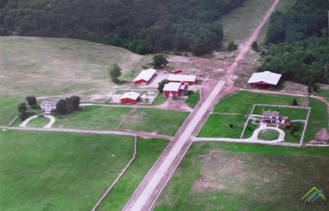 203 Cr 1917, Mt Pleasant, TX 75455 (MLS #10099738) :: RE/MAX Impact