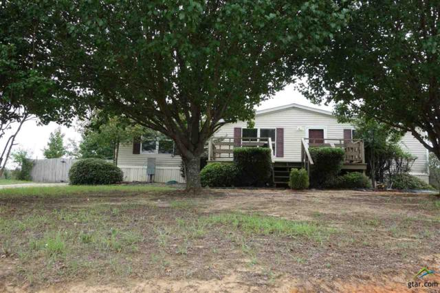 982 Cheyenne, Quitman, TX 75783 (MLS #10099751) :: The Wampler Wolf Team