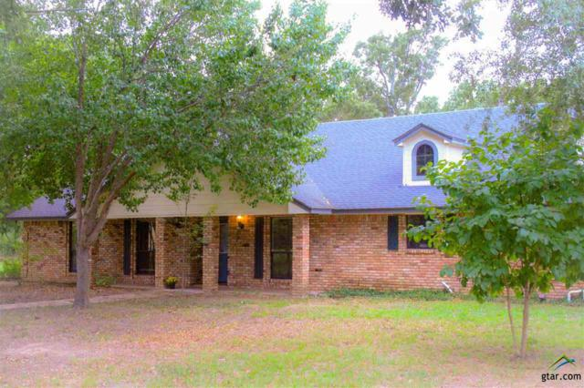 1101 Vz County Rd 2326, Canton, TX 75103 (MLS #10099865) :: The Wampler Wolf Team