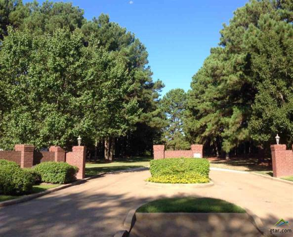 Lot 16 Summerhill Circle, Flint, TX 75762 (MLS #10099914) :: RE/MAX Impact