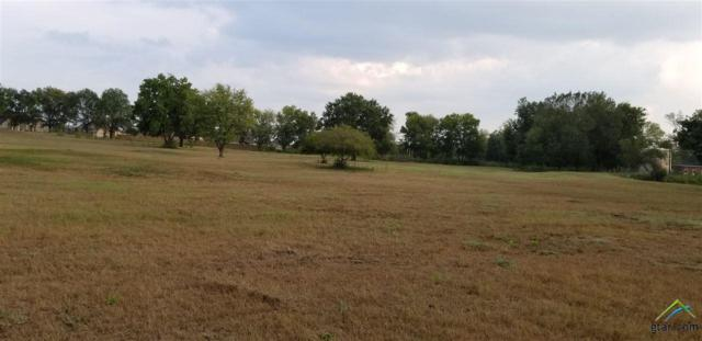 LOT 9 Cr 153, Bullard, TX 75757 (MLS #10099954) :: RE/MAX Professionals - The Burks Team