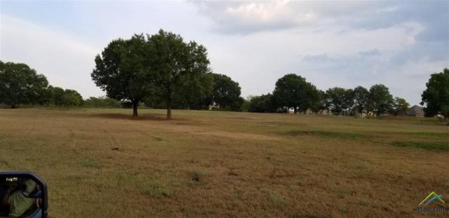 LOT 3 Cr 153, Bullard, TX 75757 (MLS #10099959) :: RE/MAX Professionals - The Burks Team