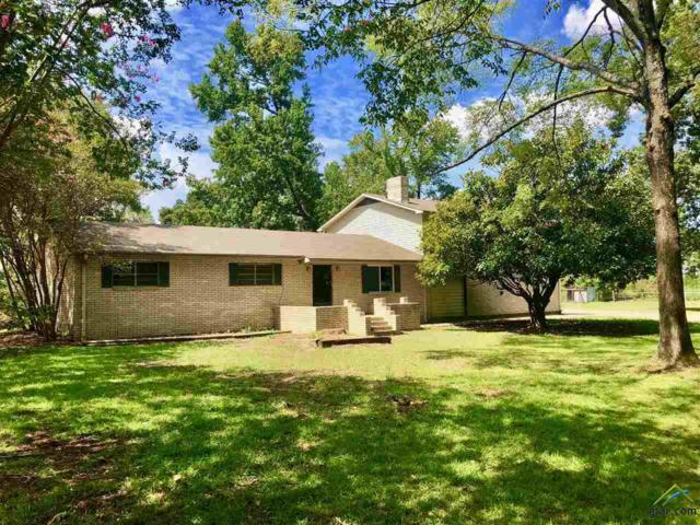 735 Cr 1250, Pittsburg, TX 75686 (MLS #10099985) :: RE/MAX Impact