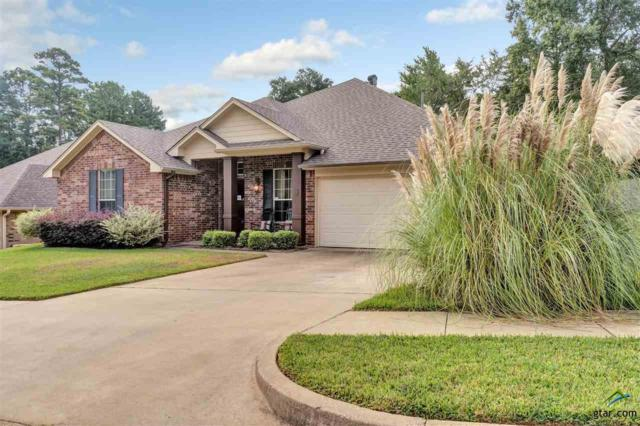 506 Skipping Stone Ln, Tyler, TX 75703 (MLS #10100100) :: RE/MAX Impact