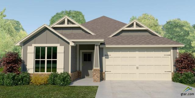 2923 Meadow Brook Trails, Tyler, TX 75701 (MLS #10100169) :: RE/MAX Impact