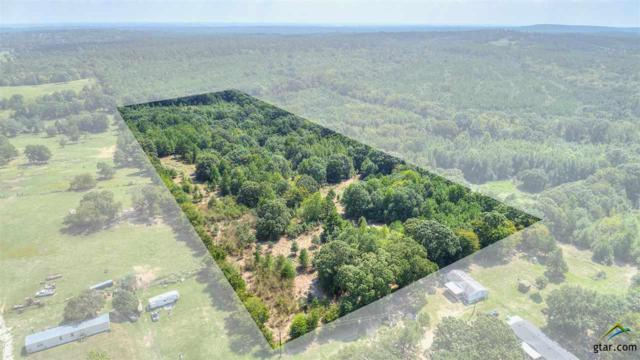 TBD County Road 4305, Larue, TX 75770 (MLS #10100348) :: The Wampler Wolf Team