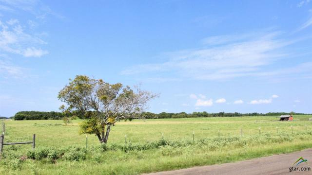 Lots 4 & 5 Acr 453, Montalba, TX 75853 (MLS #10100351) :: The Wampler Wolf Team