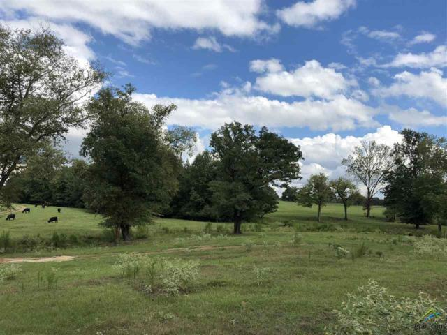 6940 State Highway 11 W, Pittsburg, TX 75686 (MLS #10100510) :: The Wampler Wolf Team
