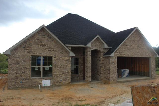2957 Salado Creek, Tyler, TX 75703 (MLS #10100649) :: RE/MAX Professionals - The Burks Team