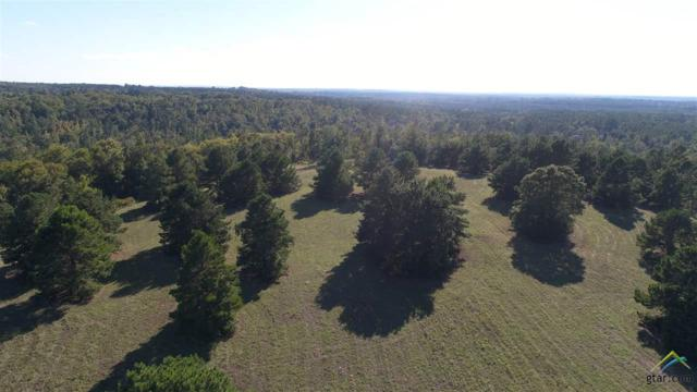1820 An County Road 156, Palestine, TX 75801 (MLS #10100813) :: RE/MAX Professionals - The Burks Team