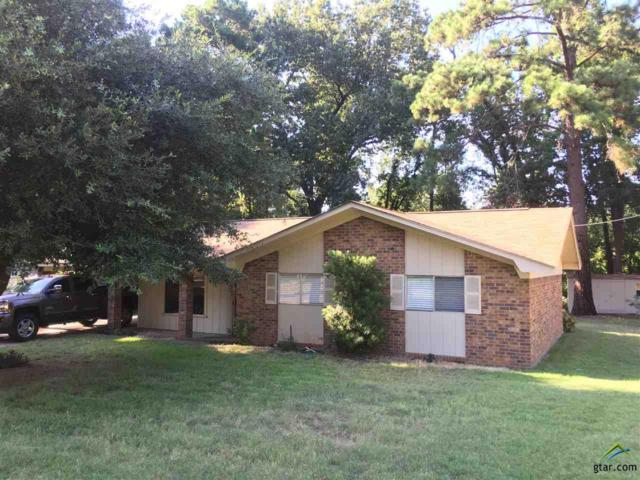 4161 Lakeshore Dr., Lone Star, TX 75668 (MLS #10100847) :: The Wampler Wolf Team