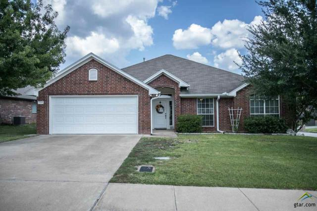 7364 Manassas, Tyler, TX 75703 (MLS #10100992) :: The Wampler Wolf Team