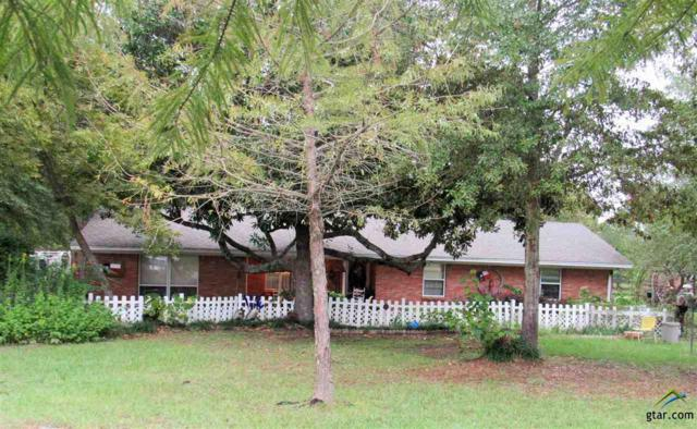 11389 Cr 290, Tyler, TX 75707 (MLS #10101003) :: The Wampler Wolf Team
