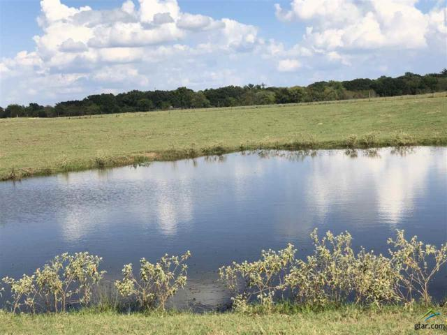 County Rd 4767, Sulphur Springs, TX 75482 (MLS #10101191) :: RE/MAX Professionals - The Burks Team