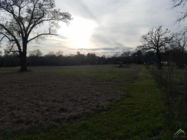 TBD County Road 2115, Troup, TX 75789 (MLS #10101239) :: RE/MAX Professionals - The Burks Team