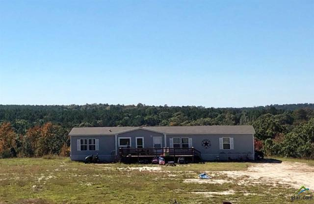 3077 Cr 4560, Winnsboro, TX 75494 (MLS #10101413) :: The Wampler Wolf Team
