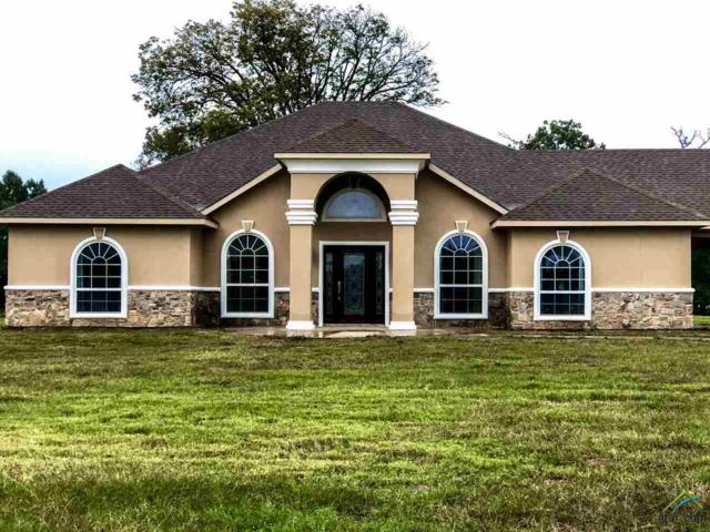 1374 County Road 4165, Quitman, TX 75783 (MLS #10101569) :: The Wampler Wolf Team