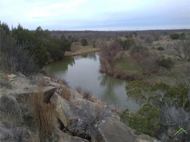 8000 Cr 1117, Out Of Area, TX 79545 (MLS #10101610) :: RE/MAX Impact