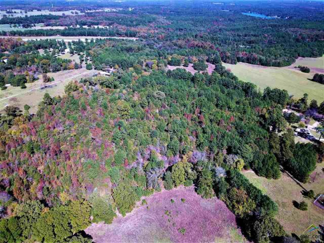 TBD Cr 437, Lindale, TX 75771 (MLS #10101628) :: The Wampler Wolf Team