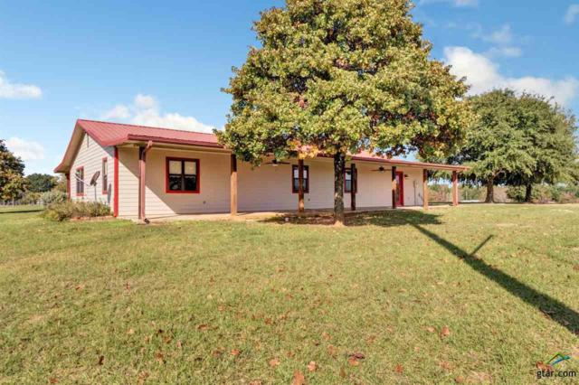 11238 County Road 4102, Lindale, TX 75771 (MLS #10101737) :: The Wampler Wolf Team