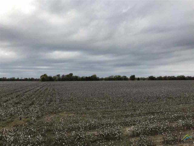 TBD Hwy 11, Commerce, TX 75428 (MLS #10101754) :: The Wampler Wolf Team