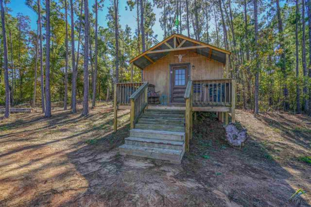 7768 Fm 2710, Lindale, TX 75771 (MLS #10101804) :: The Wampler Wolf Team