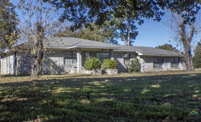 19429 F.M. 1804, Lindale, TX 75771 (MLS #10101938) :: RE/MAX Impact
