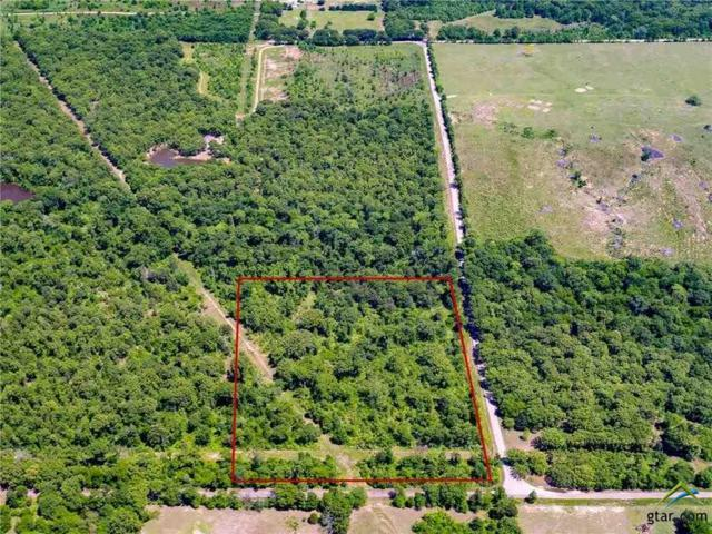TBD 03 Rs County Road 2515, Alba, TX 75410 (MLS #10101945) :: The Wampler Wolf Team