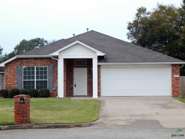 1205 Candice Court, Whitehouse, TX 75791 (MLS #10102039) :: RE/MAX Impact