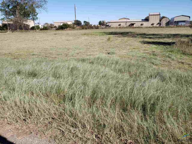 Lot 4 Rains County Road 3231, Emory, TX 75440 (MLS #10102144) :: The Wampler Wolf Team