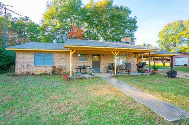 54 County Road 2210, Daingerfield, TX 75638 (MLS #10102153) :: The Wampler Wolf Team
