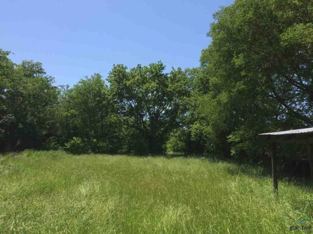 2385 Cr 3525, Dike, TX 75437 (MLS #10102349) :: RE/MAX Impact