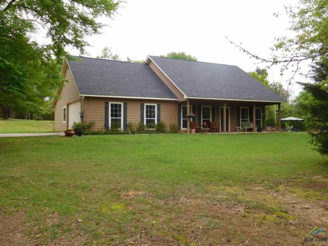 9127 Cr 3410, Brownsboro, TX 75756 (MLS #10102489) :: The Wampler Wolf Team