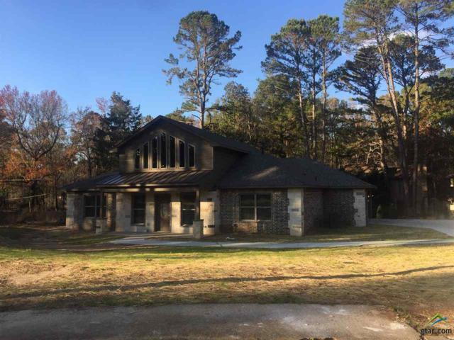 1534 Cimmarron Trail, Tyler, TX 75703 (MLS #10102604) :: RE/MAX Impact