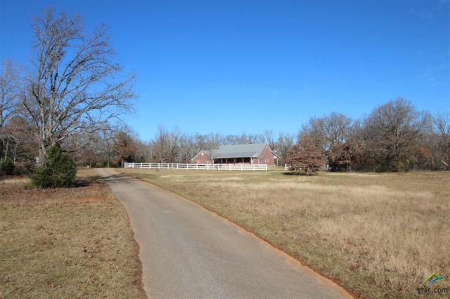 401 Vz County Road 1714, Grand Saline, TX 75140 (MLS #10102647) :: RE/MAX Professionals - The Burks Team