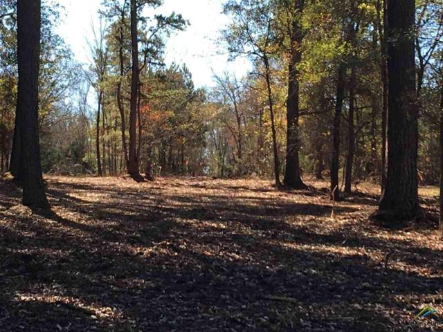 TBD Lot 199, 233, 234, 235, 236 Of East Shore Estates, Arp, TX 75750 (MLS #10102668) :: The Wampler Wolf Team