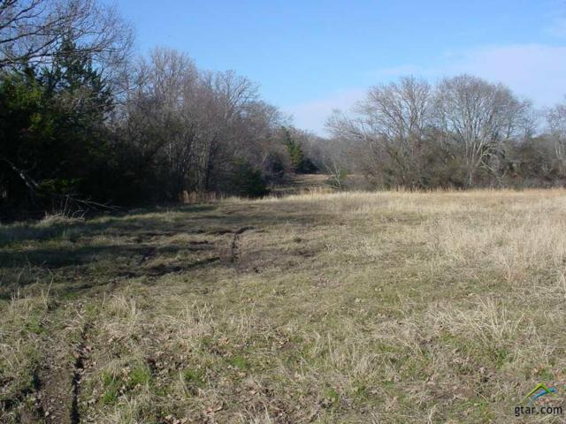 TBD Rs County Road 1150, Emory, TX 75440 (MLS #10102897) :: The Wampler Wolf Team