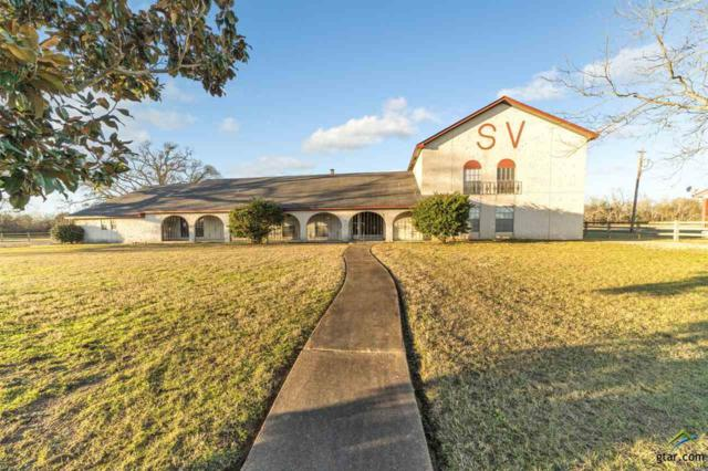 11074 State Highway 64, Overton, TX 75684 (MLS #10103058) :: RE/MAX Impact
